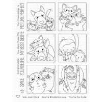My Favorite Things Picture Perfect Stamp Set